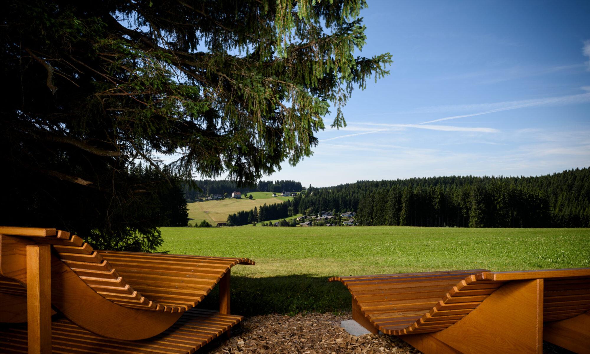 Ferienhaus im Schwarzwald